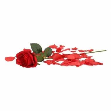 Valentijns kado nep rode roos 45 cm met rozenblaadjes